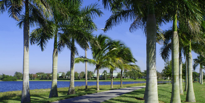 Waterside Walkway in Sunrise FL | Sunrise FL Locksmith