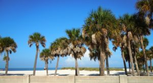 Palm Springs FL Locksmith | Palm Trees on Beach in Palm Springs FL | Lock N More