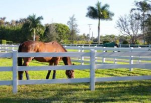 Wellington Locksmith | Horse Farm in Wellington FL | Lock N More